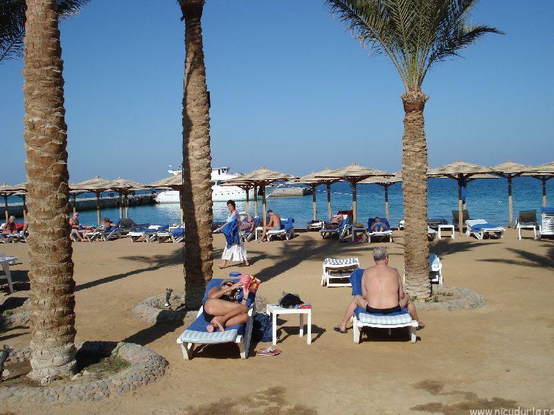 revelin egipt 2015