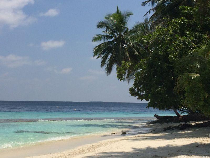 oferte maldive