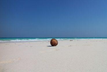 Revelion  in Zanzibar ?!