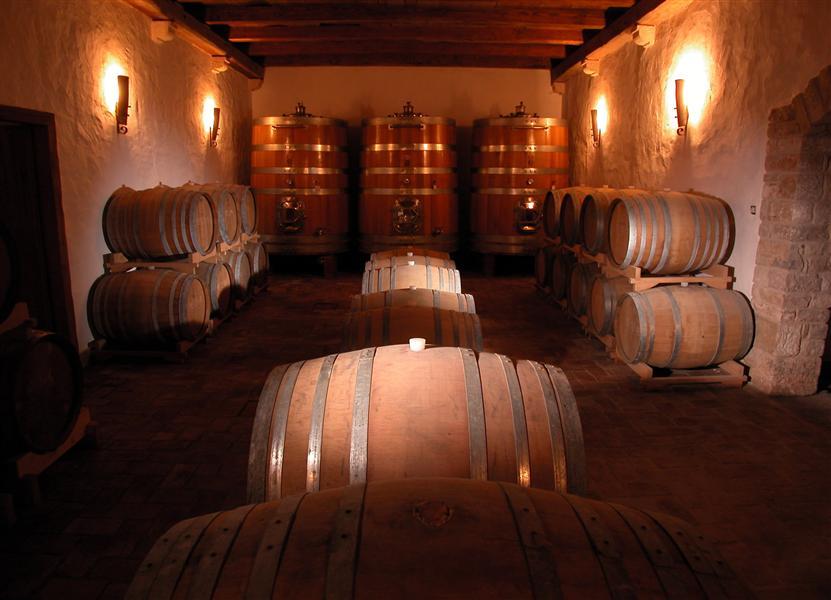 vinuri croatia 4