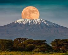 Aventuri pe Kilimanjaro
